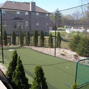 Photo of a traditional backyard outdoor sport court in St Louis.