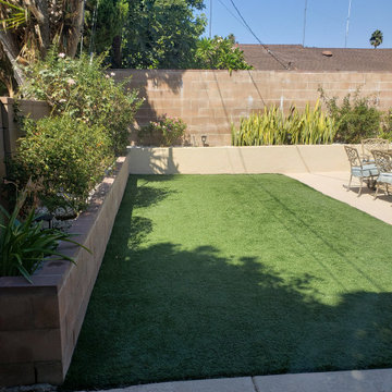 Backyard clean up and remodel
