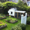 Is a Backyard Chicken Coop Right for You?