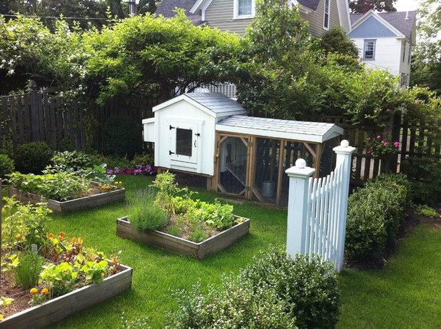 9 Astuces Pour Faire De Votre Jardin Le Paradis Des Poules