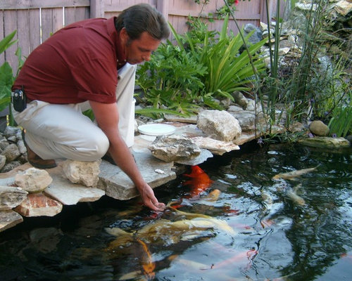 Backyard getaway water features for Fish pond features