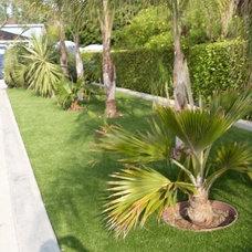 Tropical Landscape by EasyTurf