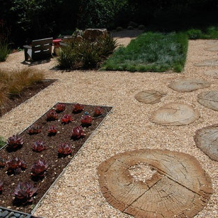 This is an example of a contemporary full sun backyard gravel landscaping in San Francisco.