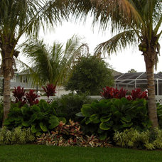 Tropical Landscape Backyard Landscaping