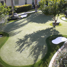 Contemporary Landscape by Back Nine Greens, Inc.