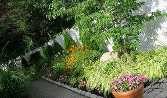 Backyard Re-Landscape Project - Newton, Mass