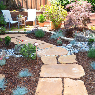 This is an example of a mid-sized traditional backyard stone garden path in San Francisco.