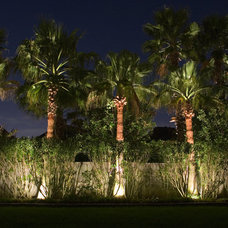 Tropical Landscape by Light It Right