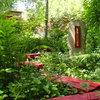 Create a Garden That Tells a Story