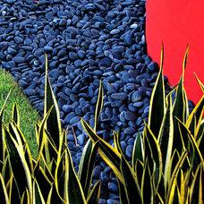 Eclectic Landscape by Bell Landscape Architecture Inc.