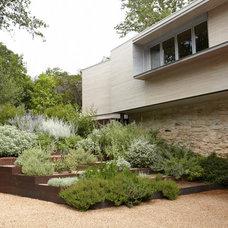 Modern Landscape by Studio Balcones