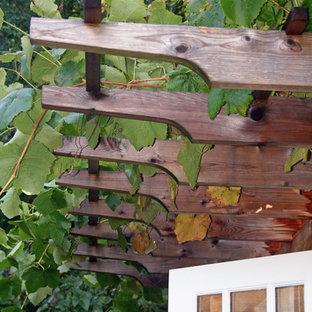 Banyon Tree Design Portfolio