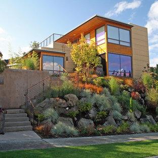Cette photo montre un jardin avant tendance avec pierres et graviers.