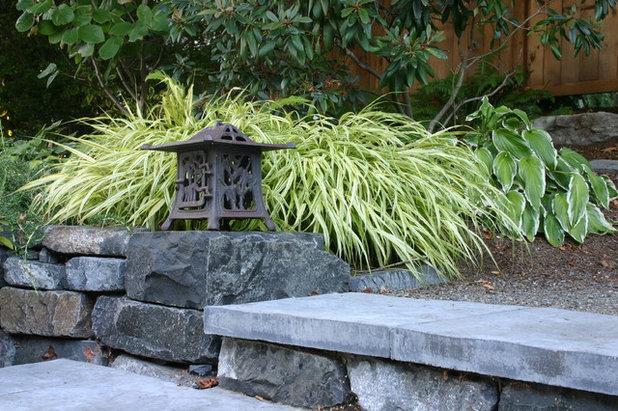Modern Garten by Banyon Tree Design Studio