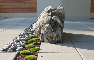 Dare to Mix Things Up in the Landscape