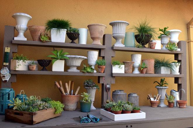 contemporary  by Living Gardens Landscape Design