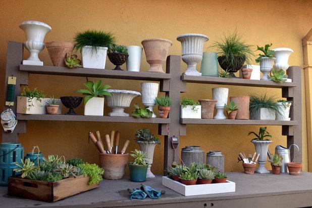 Contemporary Garden by Living Gardens Landscape Design