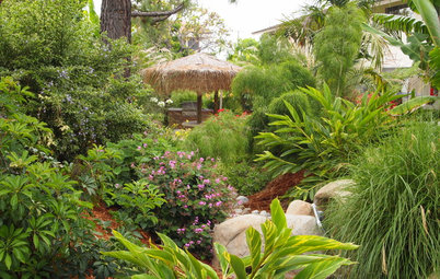 Transport Your Garden to the Tropics