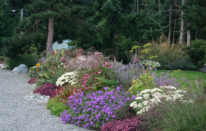 How to Design a Colorful Flower Bed