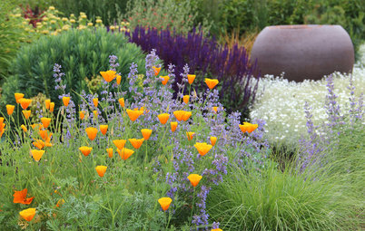 3 Color Palettes to Help Set Your Garden's Mood