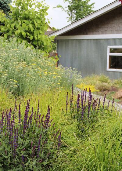 Gräser Kombinieren 9 Tolle Planz Ideen