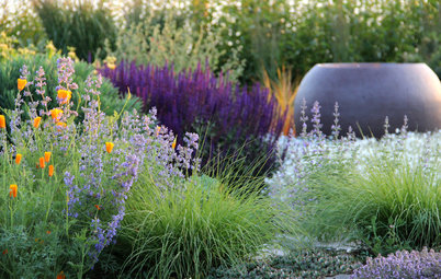 How to Transition Your Spring Garden Borders Into Summer