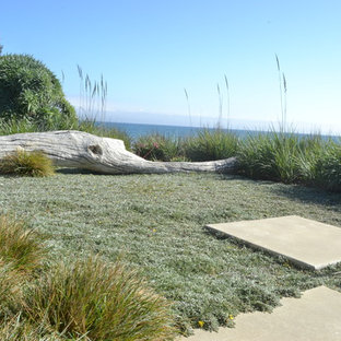 Inspiration for a coastal full sun backyard landscaping in San Luis Obispo.