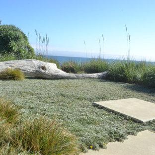 Inspiration for a beach style full sun backyard landscaping in San Luis Obispo.