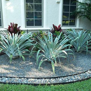 Ispirazione per un grande giardino tropicale esposto a mezz'ombra davanti casa con un giardino in vaso e pavimentazioni in mattoni