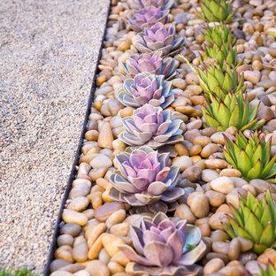 Design ideas for a small contemporary drought-tolerant backyard gravel landscaping in Orange County.