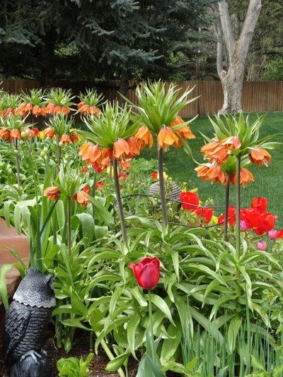 Классический Сад by B. Gardening Landscape Design