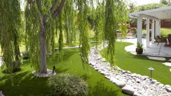 Beauty Lawn in Texas