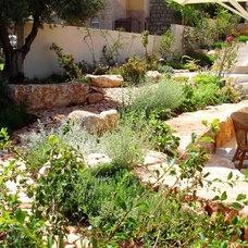 Mediterranean Landscape by GARDENIA-Sharly & Tanya Illuz