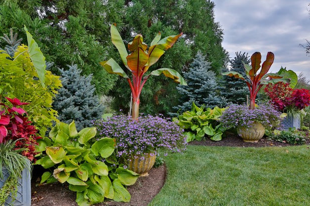 American Traditional Garden by The Todd Group