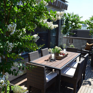 Photo of a transitional full sun rooftop landscaping in New York for summer.