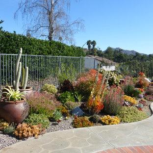 Idéer för att renovera en stor vintage bakgård i full sol som tål torka, med en trädgårdsgång och naturstensplattor