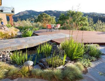 Before: Sustainably Harvested Mahogany Deck