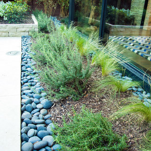 This is an example of a small modern drought-tolerant and full sun backyard landscaping in Dallas for summer.