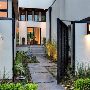 Photo of a large contemporary front garden in Houston.