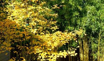 Bellevue Garden Throughout The Seasons