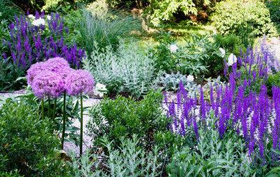 Silvery Plants Brighten Garden Beds