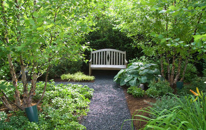 Wie lässt sich ein schöner Schattengarten gestalten?
