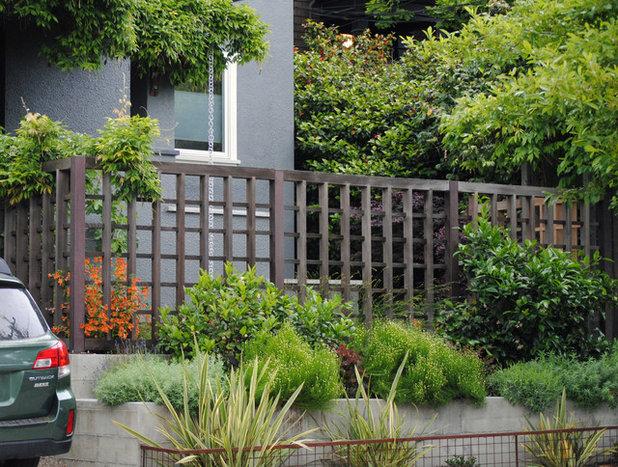 Contemporary Garden by Ian Moore Design