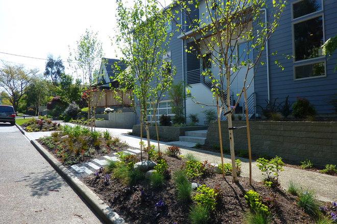 Contemporary Landscape by Erin Lau Landscape Design- Seattle