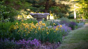 Birdbath in late spring