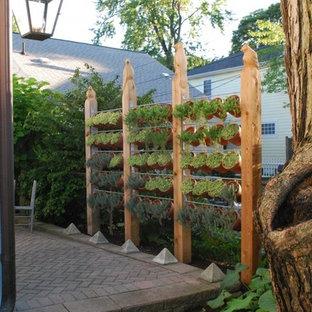 デトロイトのコンテンポラリースタイルのおしゃれな庭の写真
