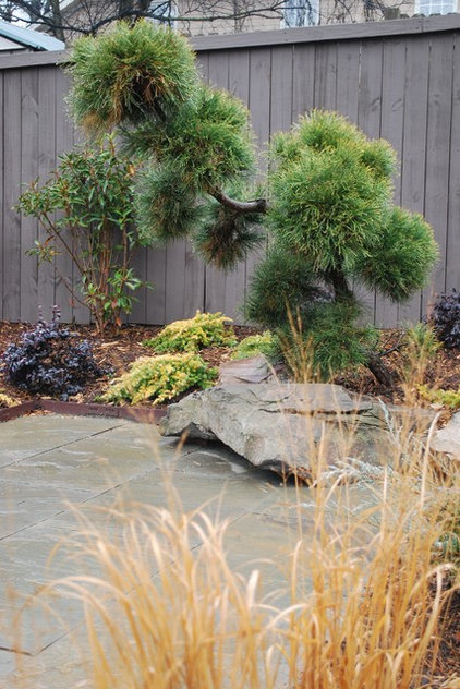 Designing With Conifers: Personality And Form In The Garden