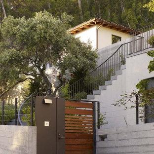 Design ideas for a modern front garden in San Francisco.