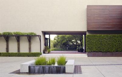 Geometric Designs Keep Plants in Line