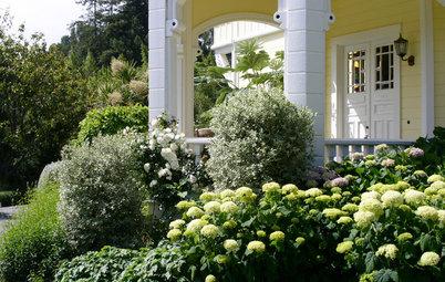 Райские кущи: Золотые правила рассадки кустарников в вашем саду